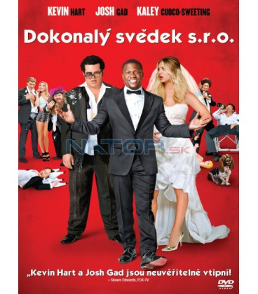 dokonaly-svedek-s-r-o-2015-cz-dabing-online-film